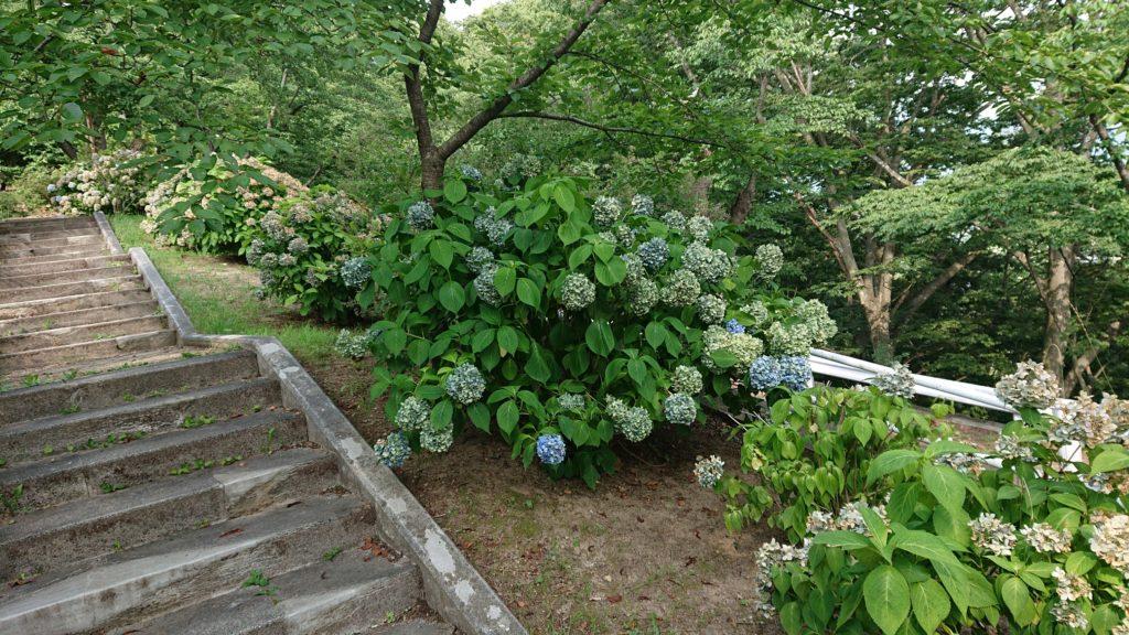 三戸城綱御門へ続く階段